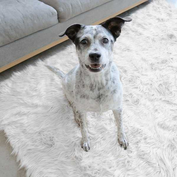 Ruggable Washable Indoor/Outdoor Stain Resistant Waterproof Pet Area Rug Luxury Shag White - 5' x 7'